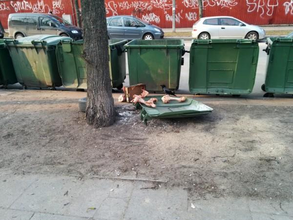 *This is Vilnius. O jei konkrečiau –Naujamiestis
